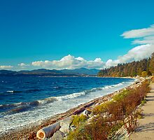 On the Sunshine Coast, BC, Canada 5 by Priscilla Turner
