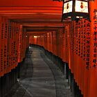 Torii gates by Bill  Russo