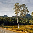 Roadtrip Tasmania by rjpmcmahon