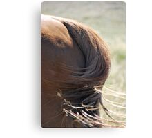 Tails a'waggin Canvas Print