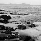 Whatipu Beach, New Zealand '07 by Elsa Thorp