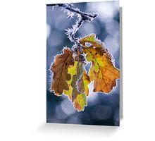 Chilly Greeting Card