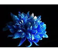 Sapphire. Photographic Print