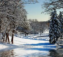 Winter Scenes # 2 by Elaine  Manley
