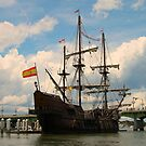 A Pirates Way by Dana Yoachum