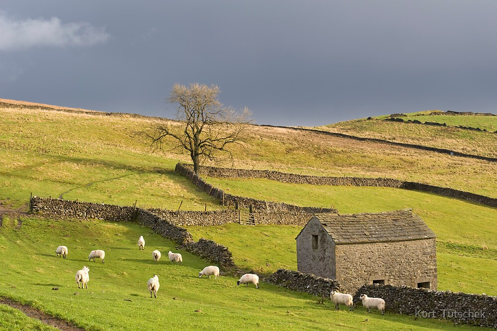 Yorkshire Dales by Kurt  Tutschek