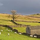 Yorkshire Dales by Kurt  Tutschek