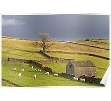 Yorkshire Dales Poster