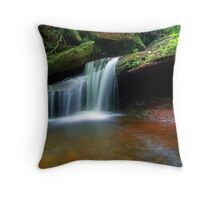 Secluded Beauty Throw Pillow