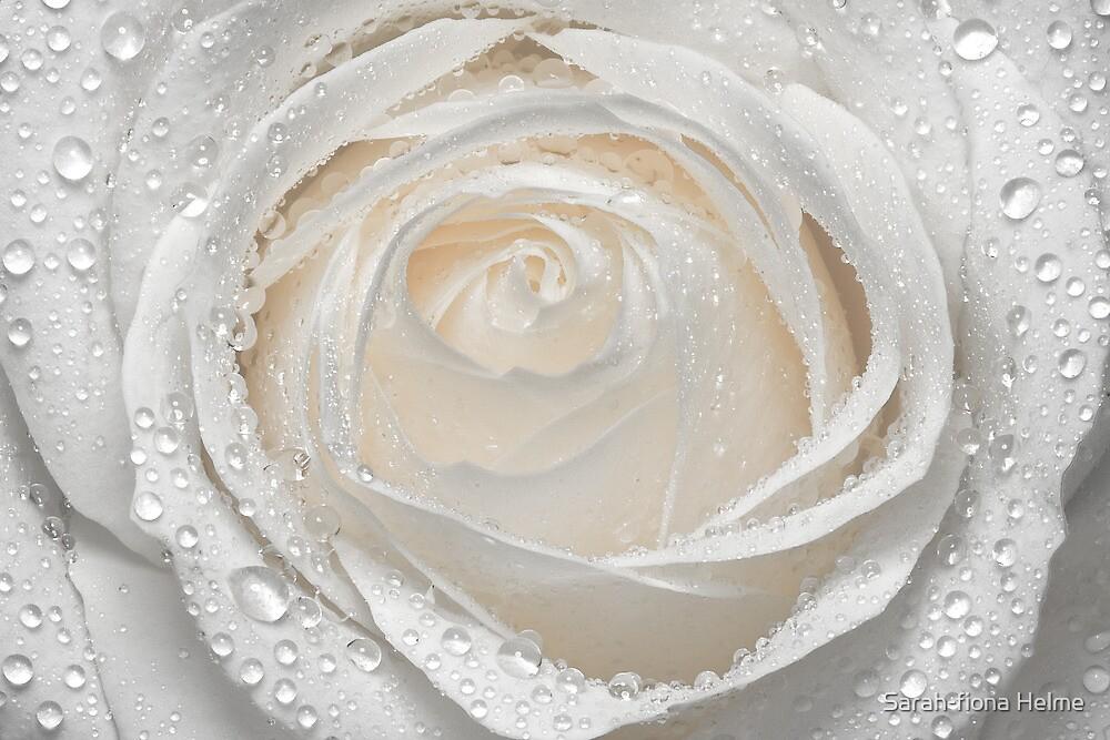 Ice Maiden by Sarah-fiona Helme
