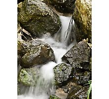 Freshwater Spring Photographic Print