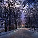 A Walk on a Winter Evening - Erie, PA by Kathy Weaver