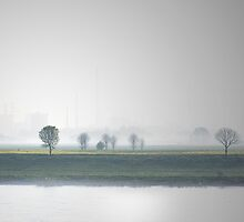 View over the Rhine by Uwe Rothuysen