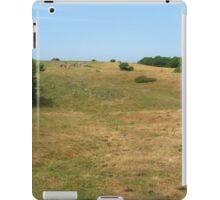 an incredible Denmark landscape iPad Case/Skin