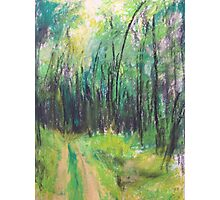 Wald (pastel) Photographic Print