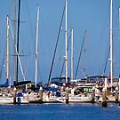 Yachts at Rest - Geelong Victoria Australia by Rhonda F.  Taylor