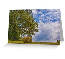 Baling Hay-1 Greeting Card