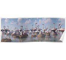 Flamingos of the Great Rift Valley Poster