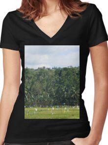 a desolate Timor-Leste landscape Women's Fitted V-Neck T-Shirt