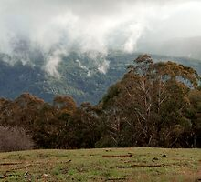 BEARDMORE HUT - VICTORIAN HIGH COUNTRY by tphotography