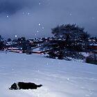 Kirknewton Village by Chris Clark