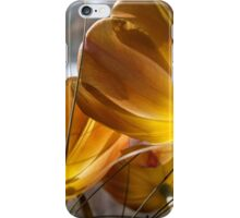 what light through yonder window breaks iPhone Case/Skin
