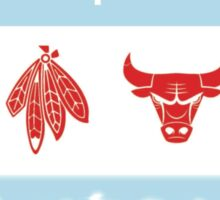 Chicago Flag with Teams and Skyline Sticker