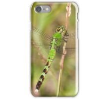 Green Dreams Are Made Of This iPhone Case/Skin
