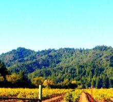 Vineyards Sonoma County Sticker