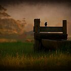 Trofff.... by Nathaniel Arnold