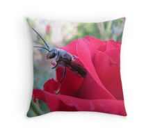 Hello! HAPPY NEW YEAR. Throw Pillow