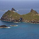 Islands off Lord Howe Island by Bill  Russo