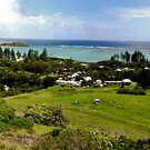 Panorama of Lord Howe Island by Bill  Russo