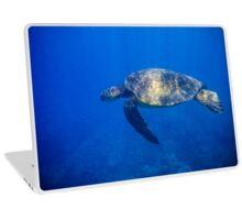 Turtle in the Blue Laptop Skin