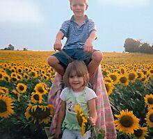 My Sunflowers by rlh1973