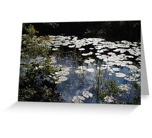 Lilies - Donegal Greeting Card