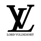 LV - Lord Voldemort by mollygraceb