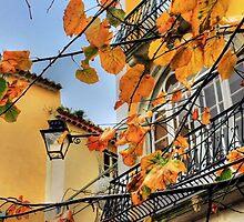 Sintra leaves... by terezadelpilar~ art & architecture