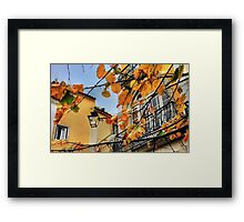 Sintra leaves... Framed Print