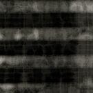 Shade of gray by Elizabeth Bravo