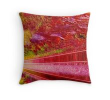 Back On Track Throw Pillow