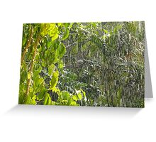 Tropical shower Greeting Card