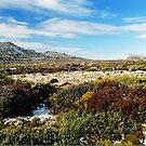 Ben Lomond Alpine Village Tasmania by rjpmcmahon