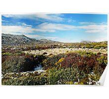 Ben Lomond Alpine Village Tasmania Poster