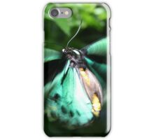 Jade Butterfly iPhone Case/Skin