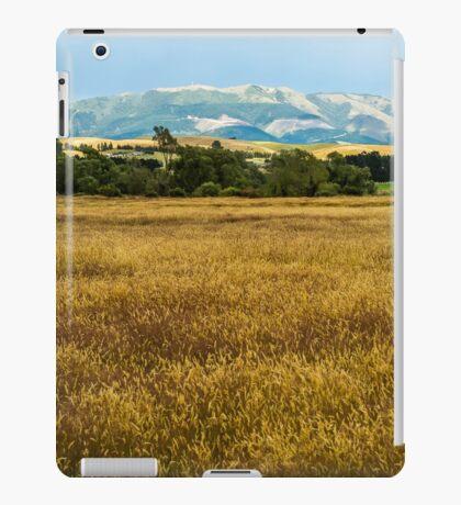 Mt Grey, New Zealand iPad Case/Skin