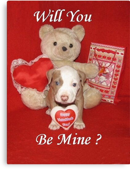 Will You Be Mine? by Ginny York