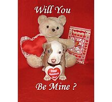Will You Be Mine? Photographic Print