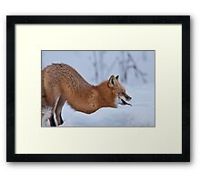Another Stretch Framed Print