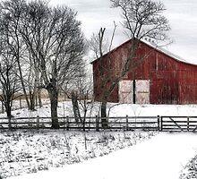 Broadside of a Red Barn by billium